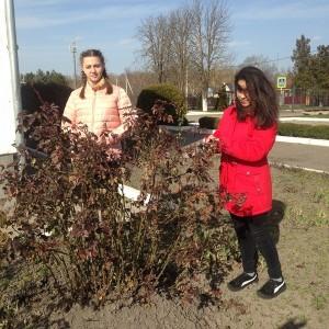 Школы городского округа приняли участие в акции, посвящённой Дню Земли (фото 2)