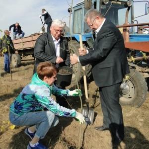 Депутаты Новопавловска отметили годовщину своего избрания в Думу округа (фото 3)