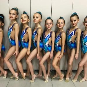 Гимнастки Новопавловска заняли 3 место в турнире по эстетической гимнастике (фото 1)