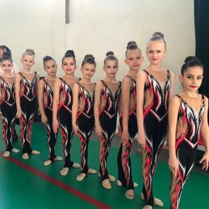 Наши гимнастки заняли призовые места в Первенстве края по эстетической гимнастике (фото 3)