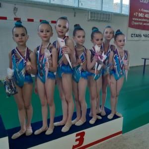 Наши гимнастки заняли призовые места в Первенстве края по эстетической гимнастике (фото 1)