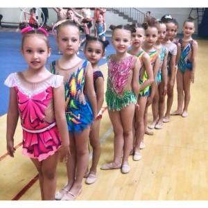 Наши юные гимнастки вернулись с наградами из города Нальчик (фото 4)