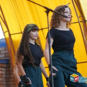 В Новопавловске отпраздновали 242-ую годовщину дня города (фото 13)