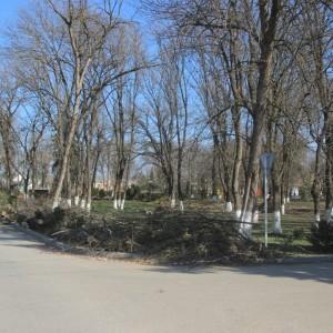 В Новопавловске начаты работы по благоустройству Культурно-исторического центра города (фото 4)