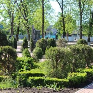 К осени обновлённый парк в Новопавловске станет точкой притяжения горожан (фото 5)