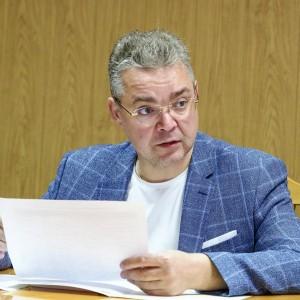 Губернатор Ставропольского края обсудил проект по созданию парковой зоны в Новопавловске (фото 3)