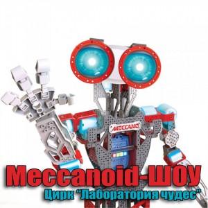 Meccanoid-Шоу в г. Новопавловске