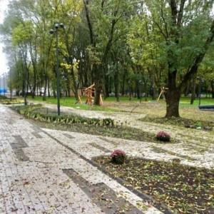 Скейт-парк и экотропы обустроили в пойме реки Куры в Новопавловске