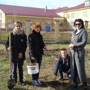 В Новопавловске появилась новая берёзовая аллея (фото 4)