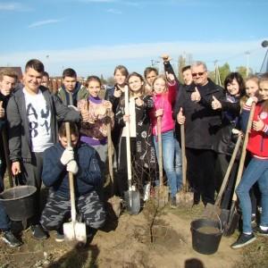 В Новопавловске появилась новая берёзовая аллея