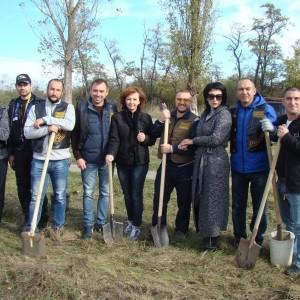 В Новопавловске появилась новая берёзовая аллея (фото 5)