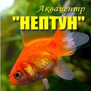 Нептун, аквацентр