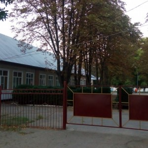 Новопавловский многопрофильный техникум, ГБПОУ