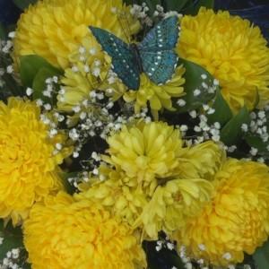 Цветы, павильон (ИП Гарбузов П.В.) (фото 4)