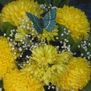 Цветы, павильон (ИП Гарбузов П.В.) (фото 3)