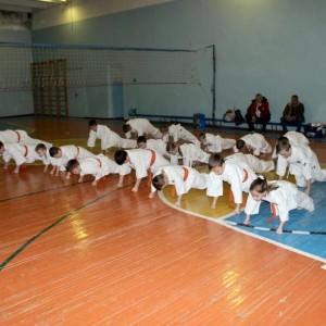 Чемпион, клуб спортивных единоборств (фото 14)