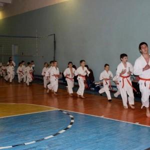 Чемпион, клуб спортивных единоборств (фото 17)