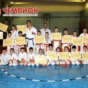 Чемпион, клуб спортивных единоборств (фото 8)