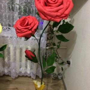 Ростовые цветы (фото 2)