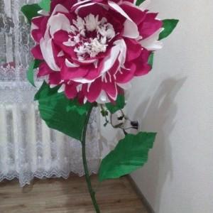 Ростовые цветы (фото 1)